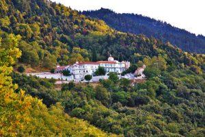 Ταξιδιωτικό γραφείο Mavrogiannis Travel δαμάστα